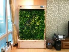 에코월 식물 공기 살균정화기(1300)