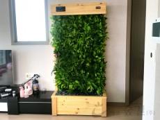 에코월 식물 공기 살균정화기(1000)