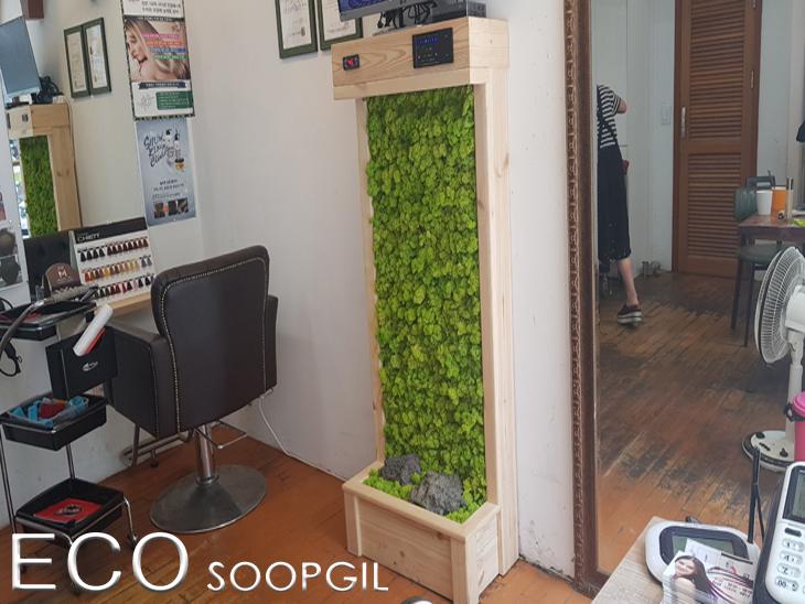 에코월 식물 공기 살균정화기(1050)