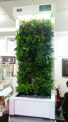 에코월 식물 공기 살균정화기(1500)