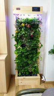 에코월 식물 공기 살균정화기(1800)