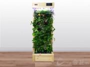 에코월 식물 공기 살균정화기(2000)